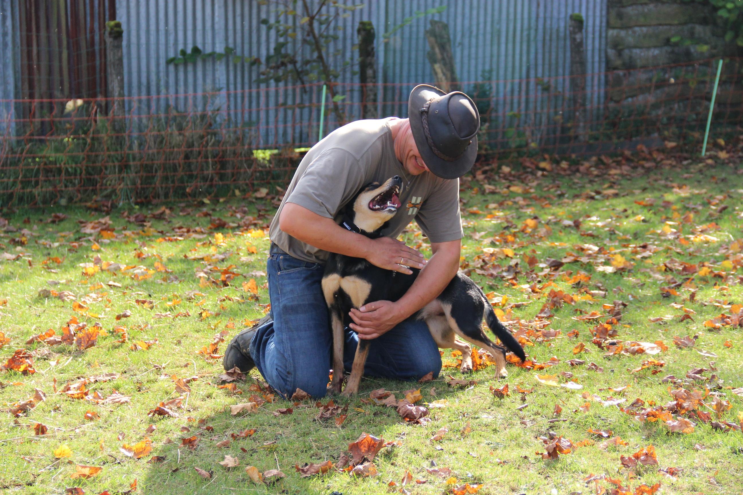 Tess is Guy zijn eerste Australian working kelpie, zijn rechter hand en werkmakker. Maar ook zijn dikke vriend!!